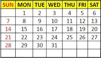 6.dynamic month
